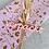 Thumbnail:  Geschenkpapier  50x300cm Kraftpapier Blumen rosa gold