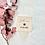 Thumbnail: Trauerwürfel / Erinnerungswürfel