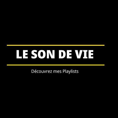 LE SON DE VIE (EPISODE 1/VIDEO MP4)