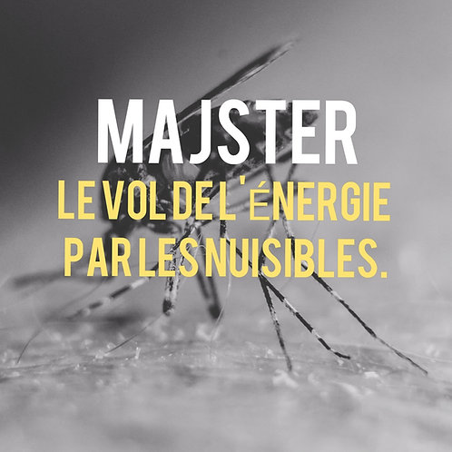 LES NUISIBLES CYBORGS (PODCAST/MP3)