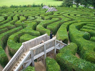 Finding Your Way Through The Leadership Maze