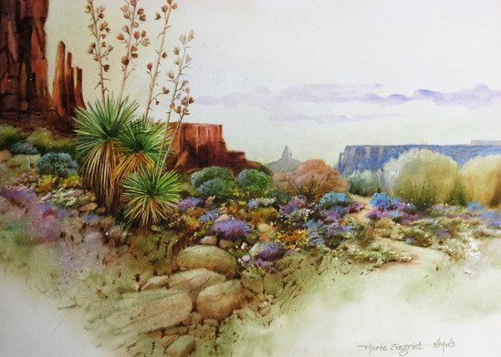 Monument Valley Impressions
