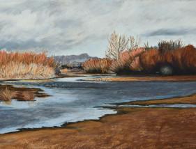 Rio Grande in Winter near Old Mesilla