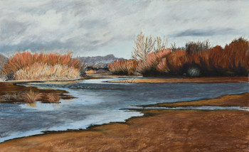 Rio Grande in Winter near Old Mesilla