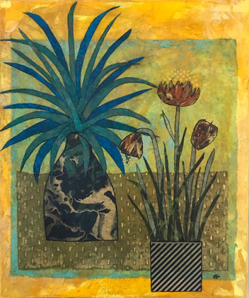 Blue Agave and Friends