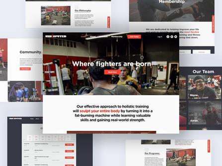 Web/UX Design