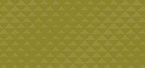 Prototipo-Home-Verde(300x140).png