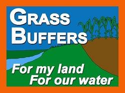 Grass-buffers-FINAL_web.jpg