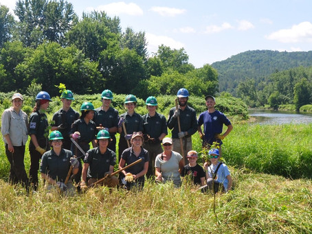 Collaborating to Enhance an Oxbow Ecosystem in Fairfax