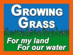 Grass-51-FINAL_web.jpg