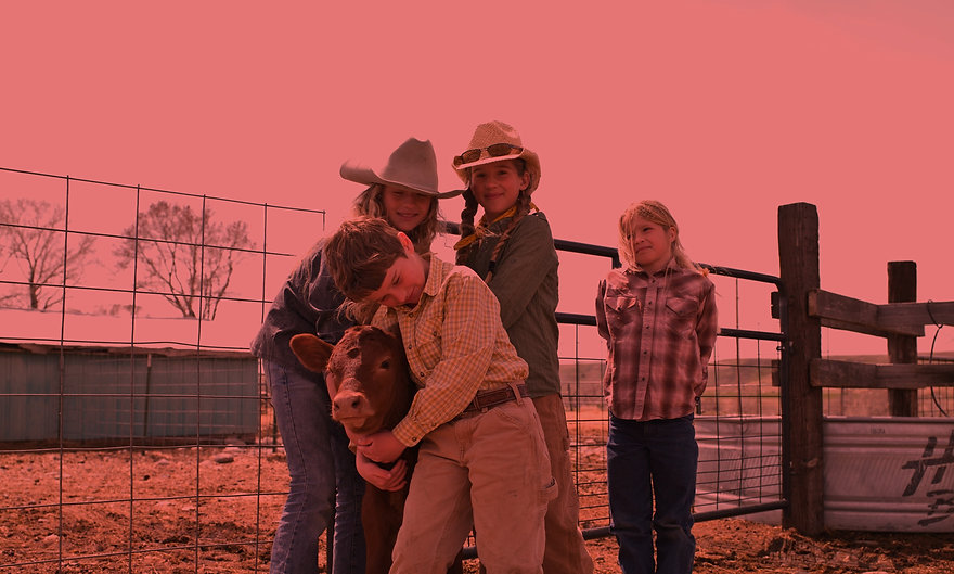 cowboy kids Christian Academy school with equine therapy
