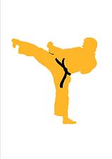 Alex Ryu Jitsu
