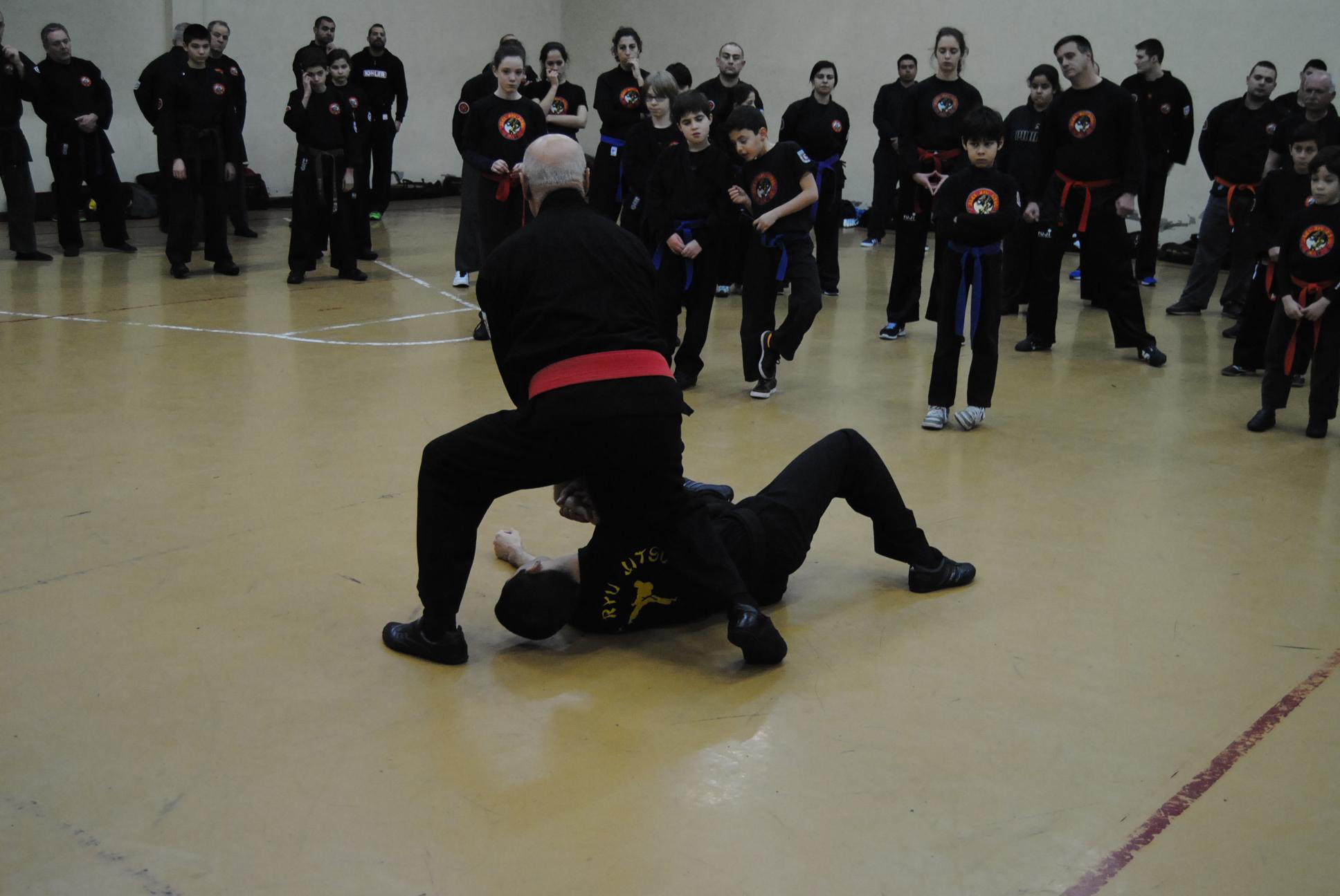 Flickr - Curso Defesa Pessoal_14-02-2015_Alex Ryu Jitsu (44)
