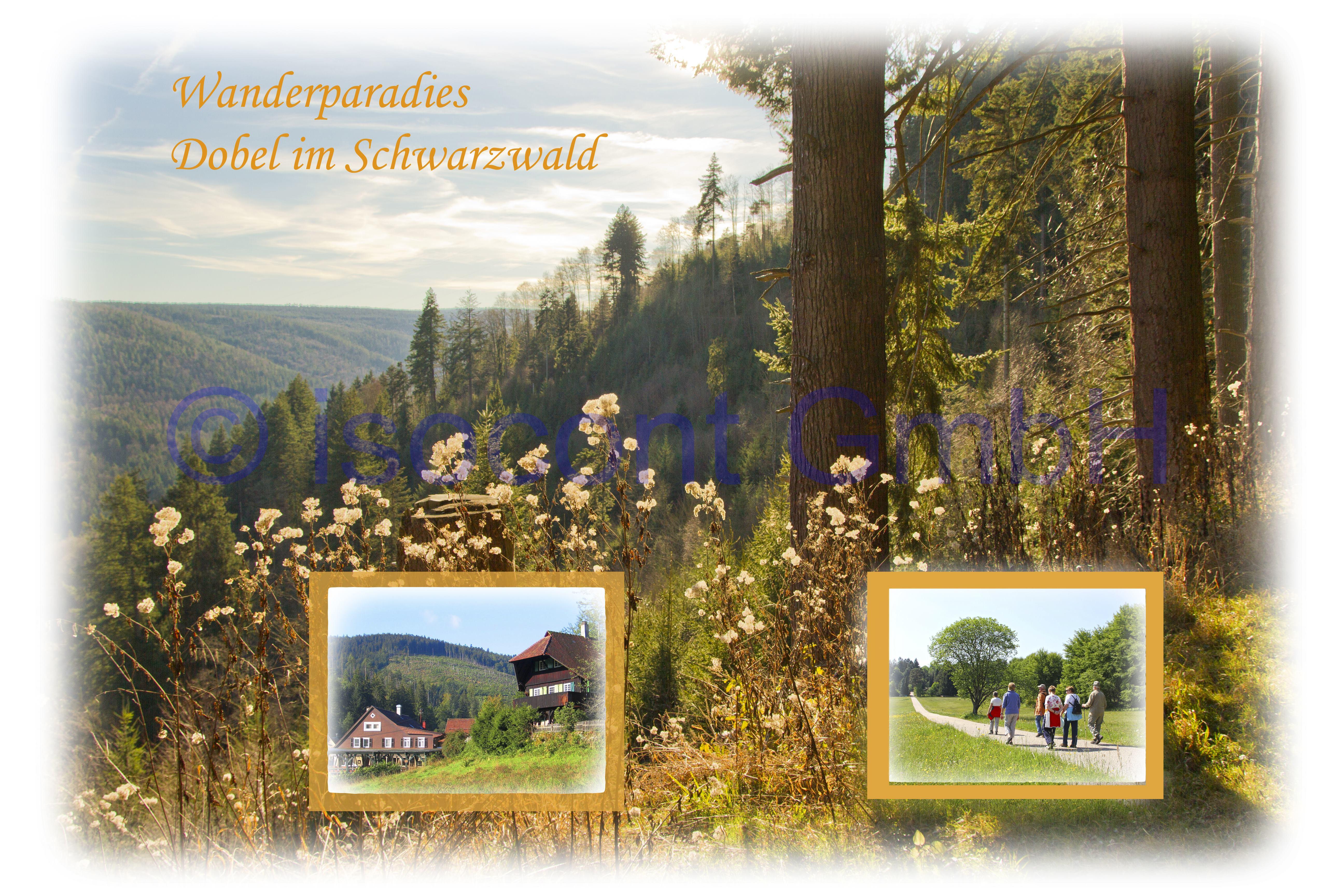Postkarte Wanderparadies Dobel 2-1