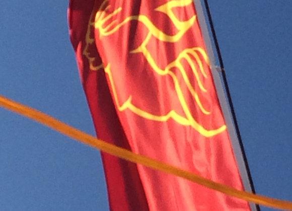 Regatta flag
