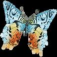 Aquarell-Schmetterling 13