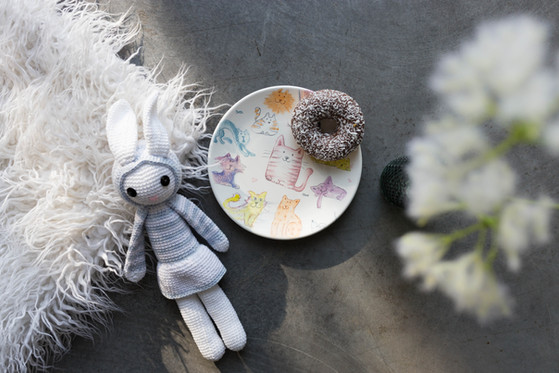 Plate, donut and bunny.jpg