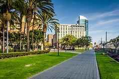 SD Commercial Landscape.jpeg