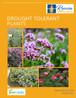 V2 Drought Tolerant Booklet Cover-1.jpg