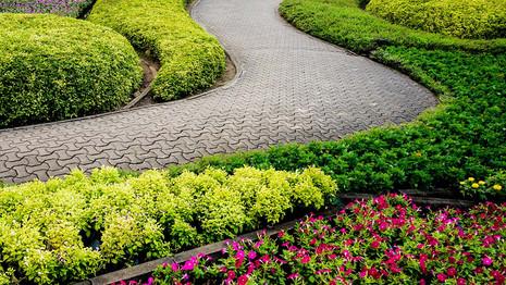 Garden Design Concepts