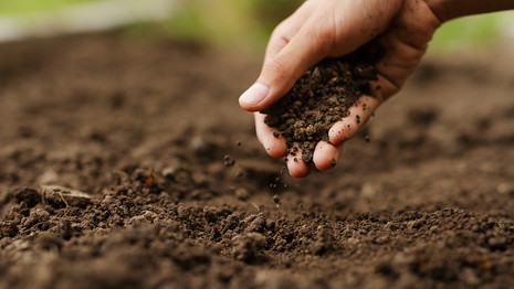 Hands-On: Preparing Garden Soil