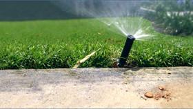 Understanding Statewide Landscape Design and Irrigation Design Implementation Ordinances