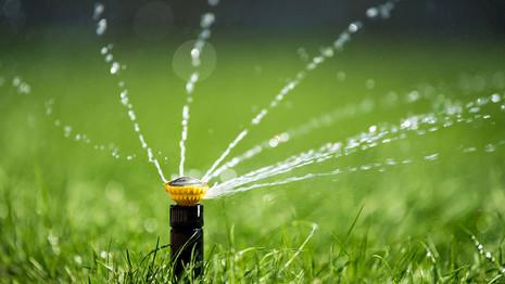 Sprinkler and Drip System Basics