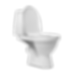 Toilet_edited.png