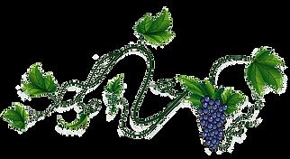 wienhoes_wijnrank3.png