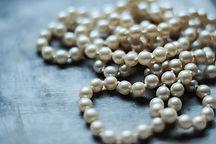 alpaha pearls.jpg