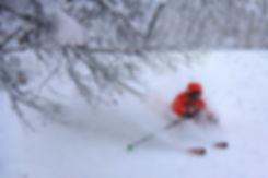 Freeride skiing - tree runs in Niseko area, Japan