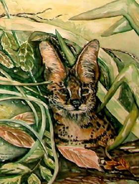 hyenagroot.jpg