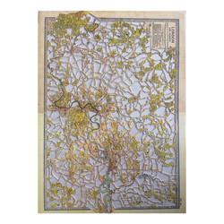 Tree of Life- Paper