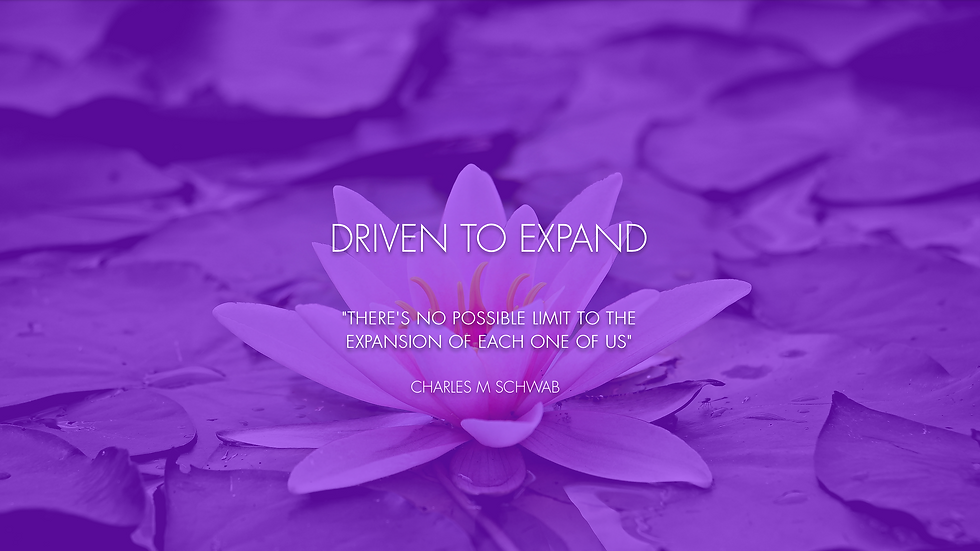 Driven To Expand