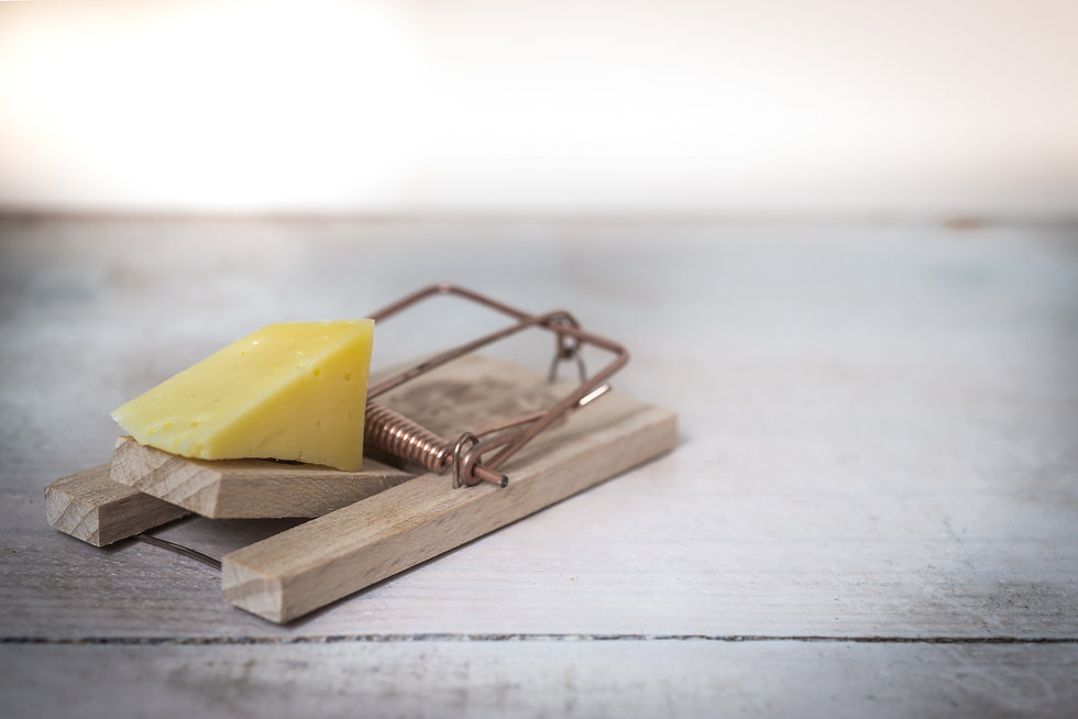 brown-wooden-mouse-trap-with-cheese-bait