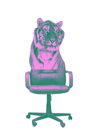 Heads&Tales_TigerChair.png