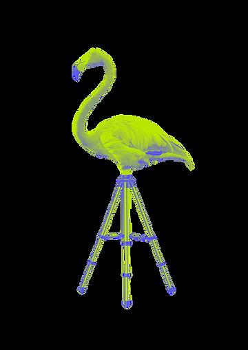 Heads&Tales_FlamingoTripod.png