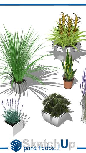 Componentes   6 modelos 3D de plantas pequeñas