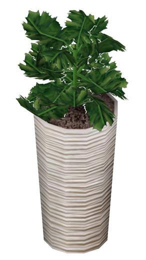 Componentes de plantas en materas