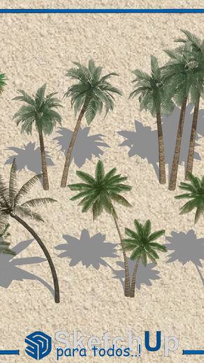 Componentes   6 palmeras