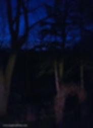 Ghoul's Garden Gate Night.jpg