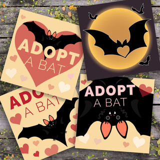 ADOPT a bat program