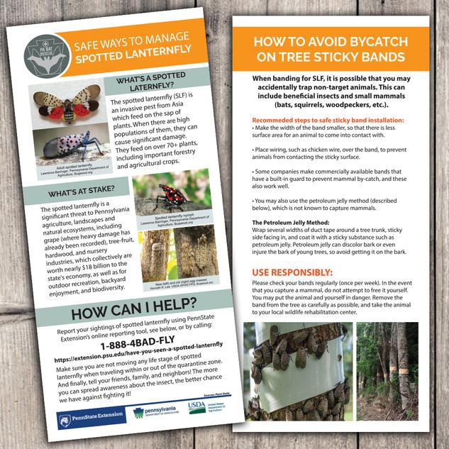 Spotted Lanternfly pamphlet