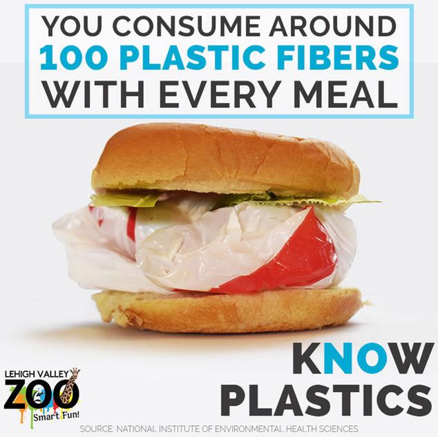 Know Plastics PSA