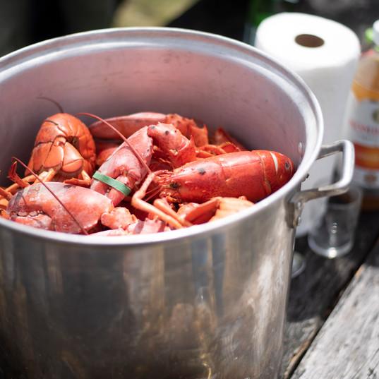 Lobster initiation dinner