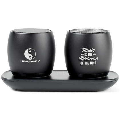 Paxton Bluetooth Pairing Speakers