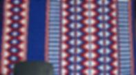FLAG-1 EM.jpg