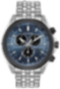 Citizen Watch.png