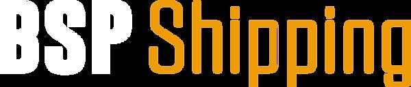 B S P light logo.png