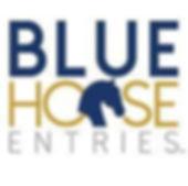 bluehorse.jpg